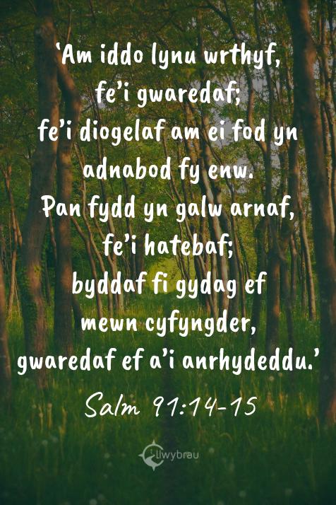 Salm 91:14-15
