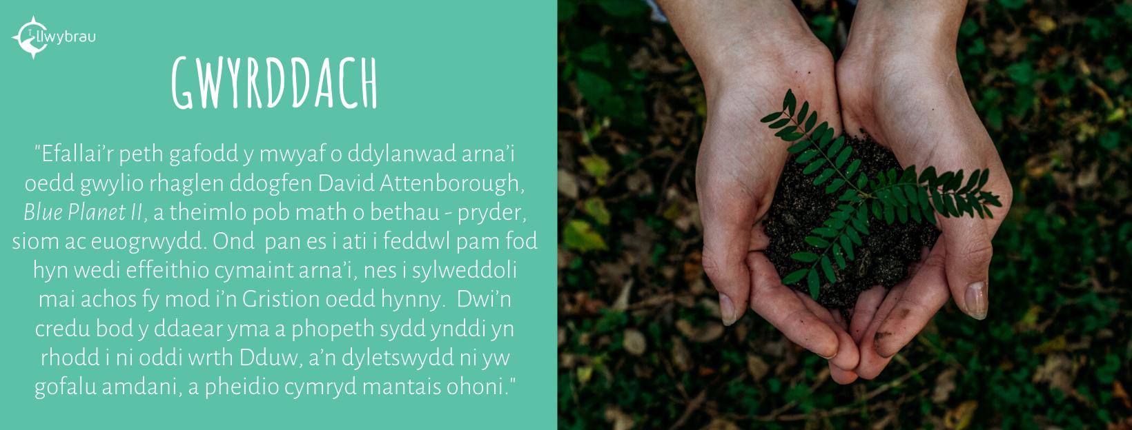 Gwyrddach