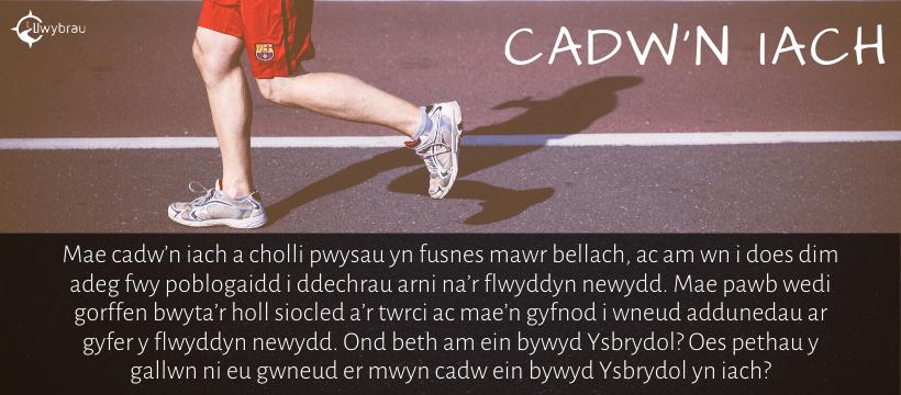 cadw'n iach