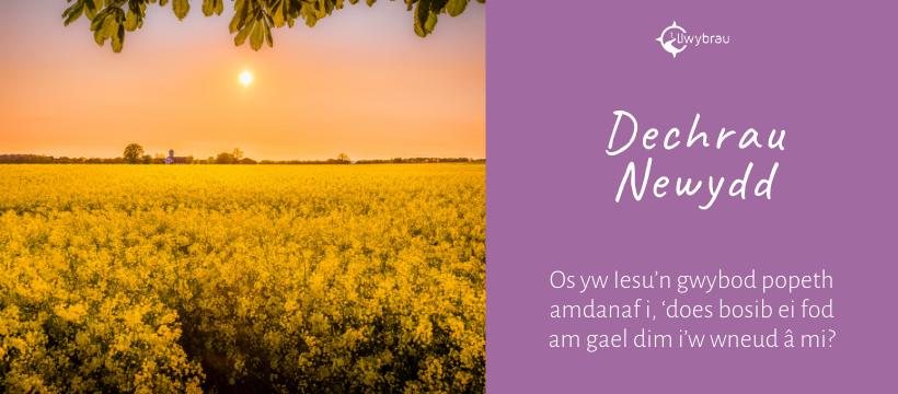 Dechrau Newydd